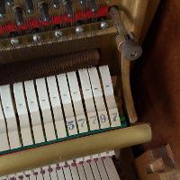 Brambach Baby Grand Piano Serial Number Baglinoa